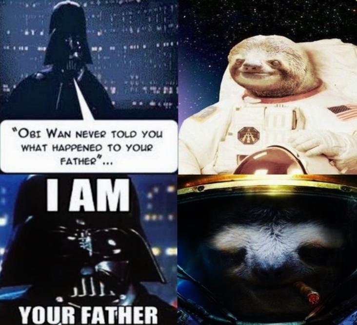 astronaut sloth meme - photo #2