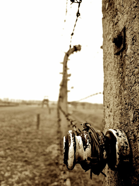 Birkenau, vieja alambrada electrificada