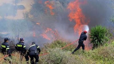 """Έκκληση πυροσβεστών από τα Δερβενοχώρια: """"Μας έχουν αφήσει χωρίς νερό και φαγητό""""."""