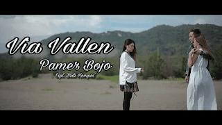 Lirik Lagu Pamer Bojo - Via Vallen