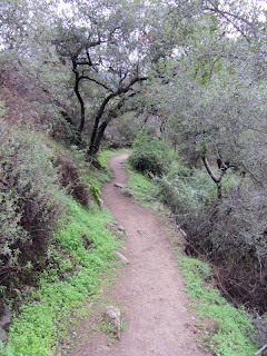 Bill Cull Trail, Monrovia Canyon