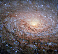 The Sunflower Galaxy (Messier 63)