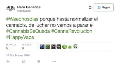 #ElCannabisSeQueda tweet Raro genetics