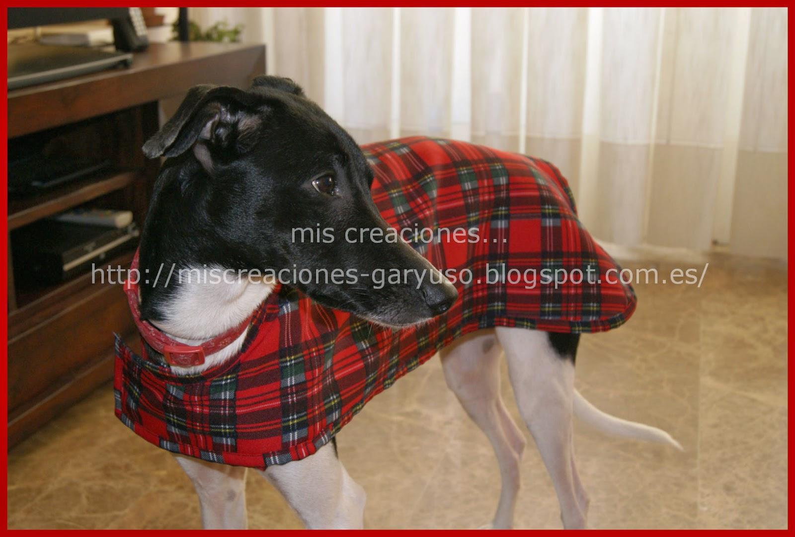 capa de invierno para mascota