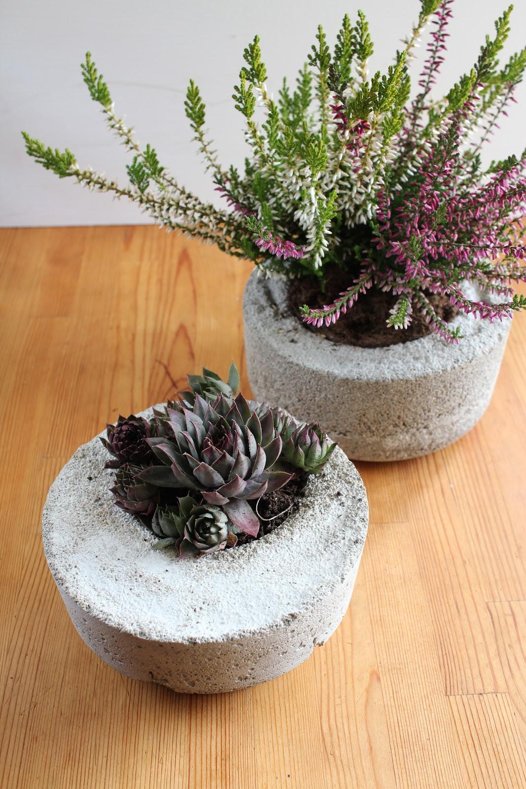 diy schalen aus beton green bird diy mode deko und interieur. Black Bedroom Furniture Sets. Home Design Ideas