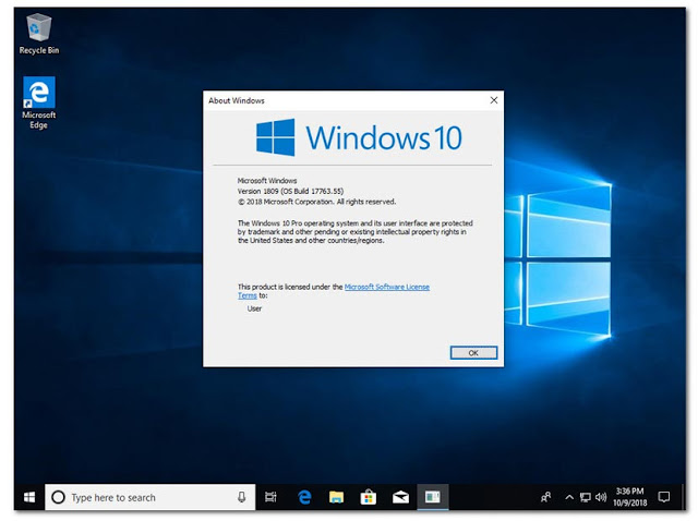 Windows-10-Pro-Redstone 5-Office 2019-Pre-Activated-1