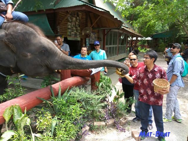 Elephant Village Damnoen Saduak Housing