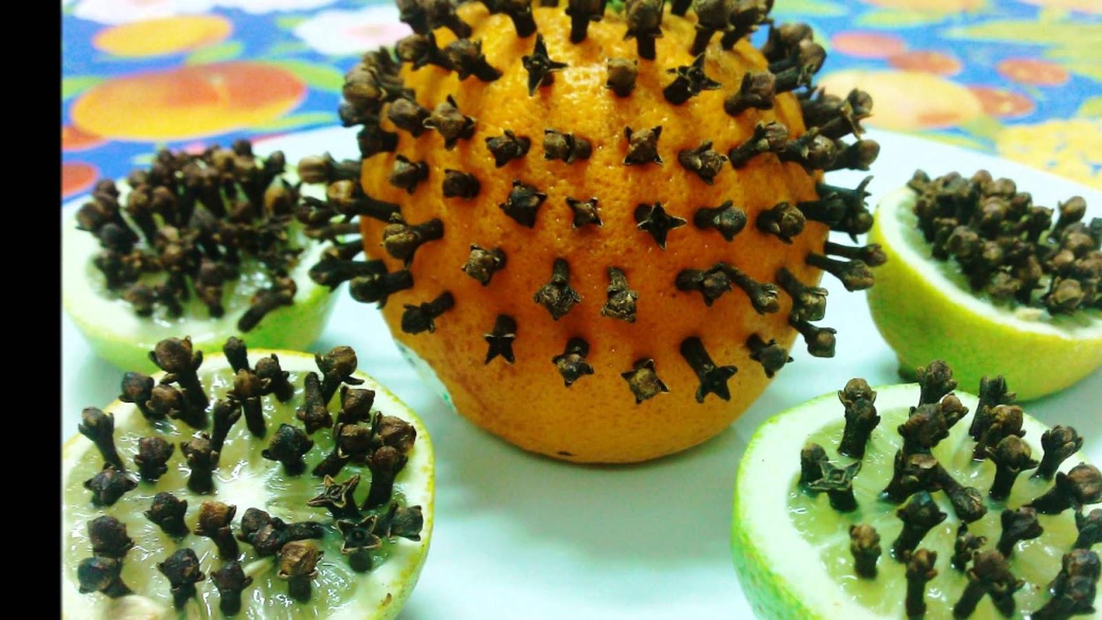 التخلص من البعوض (الناموس) طبيعياً