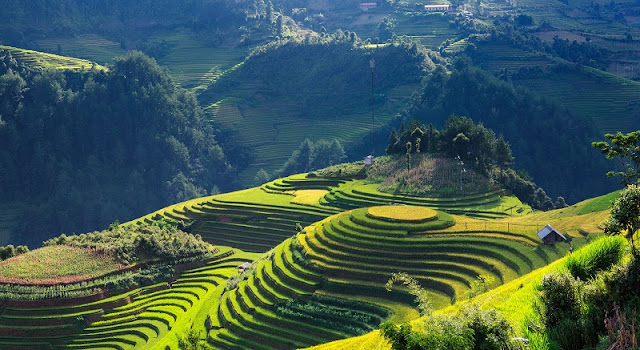 One of the most impressive mountains in the world is located in Mu Cang Chai in the North of Vietnam
