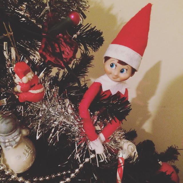 elf on the shelf on christmas tree