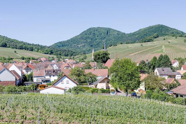 Ein Tag in der Pfalz, Pomponetti, Birkweiler