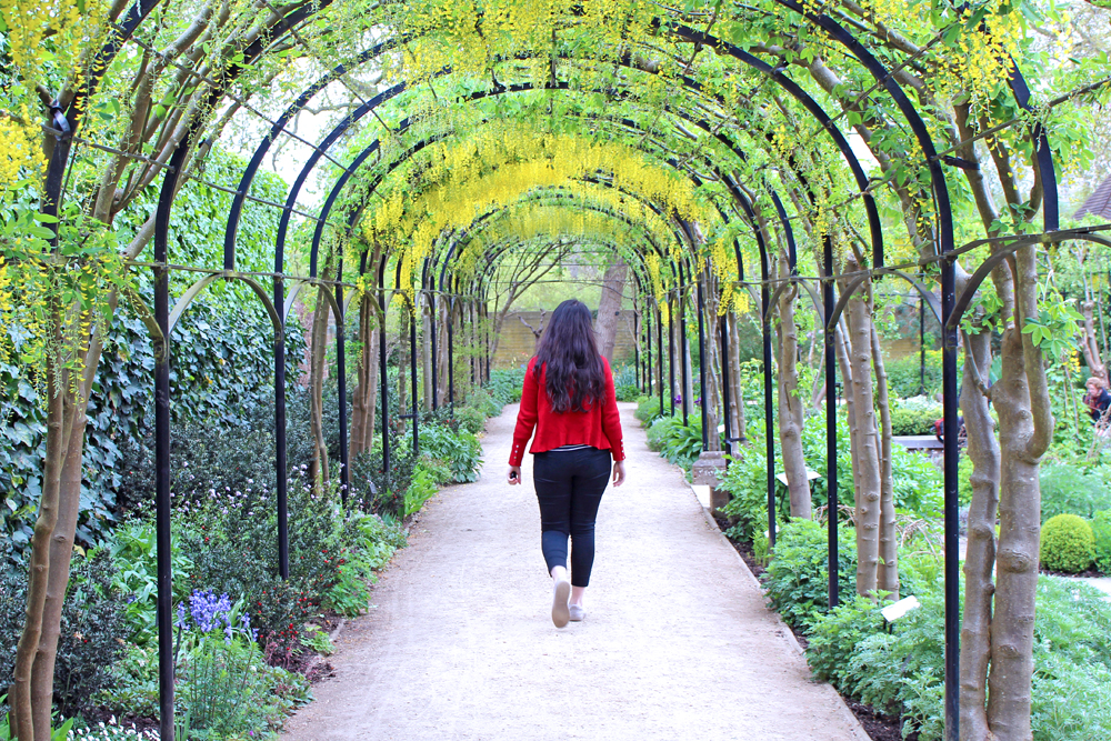 Honeysuckle arch at Kew Gardens in Spring - London lifestyle blog