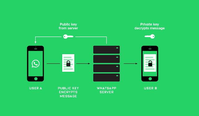 Whatsapp Encrypts