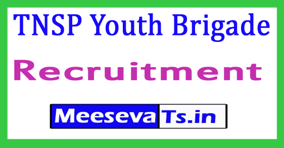 TNSP Youth Brigade Recruitment 2017
