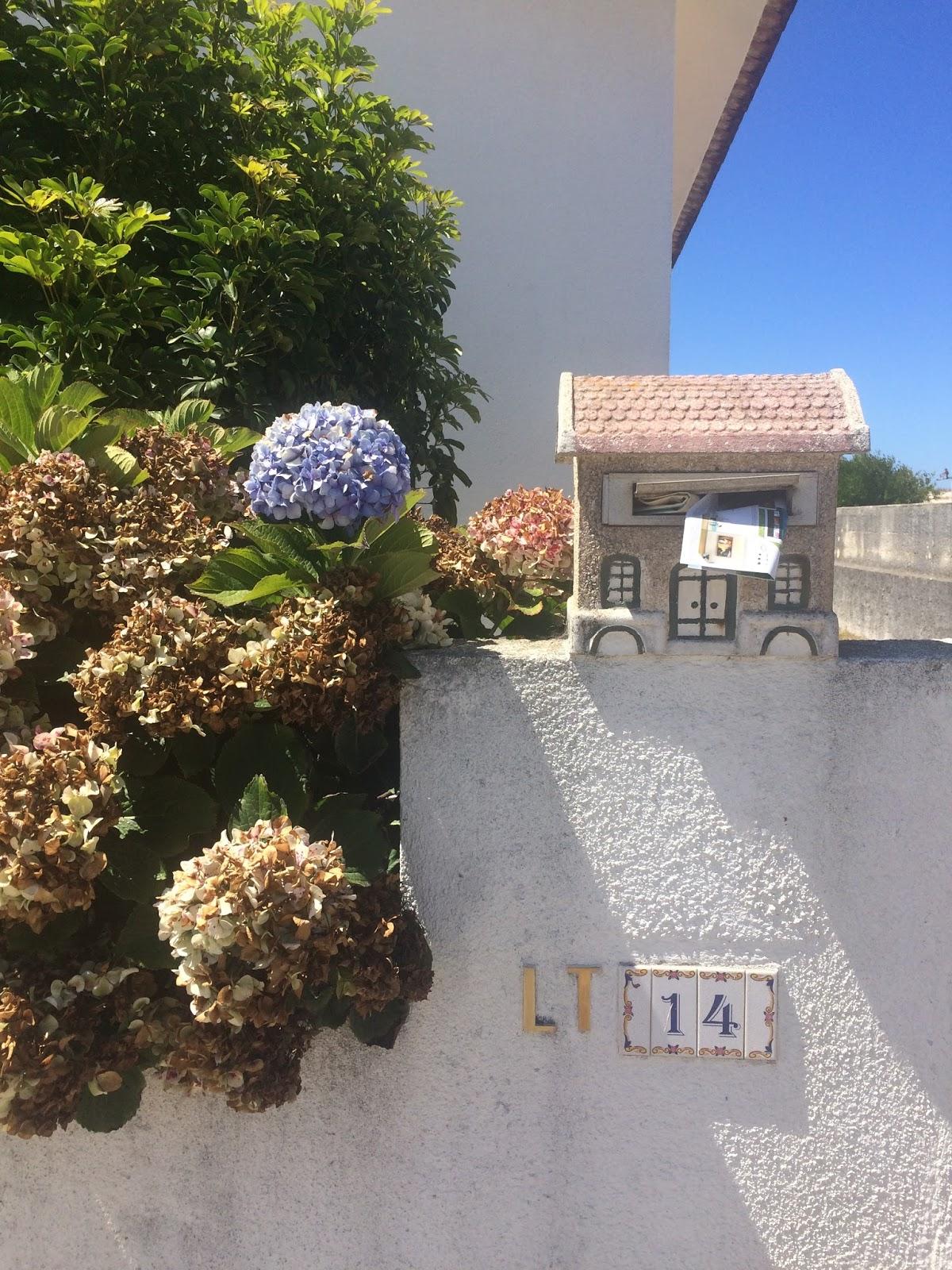 co zobaczyć w portugalii, blog podróżniczy, aveiro