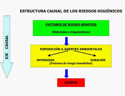 riesgos, higienicos, que son, descripcion