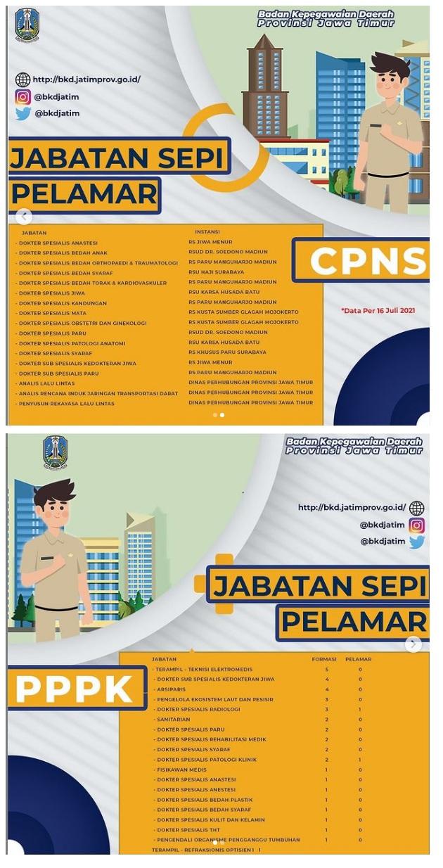 Daftar Posisi Sepi Pelamar pada CPNS PPPK Provinsi Jawa Timur