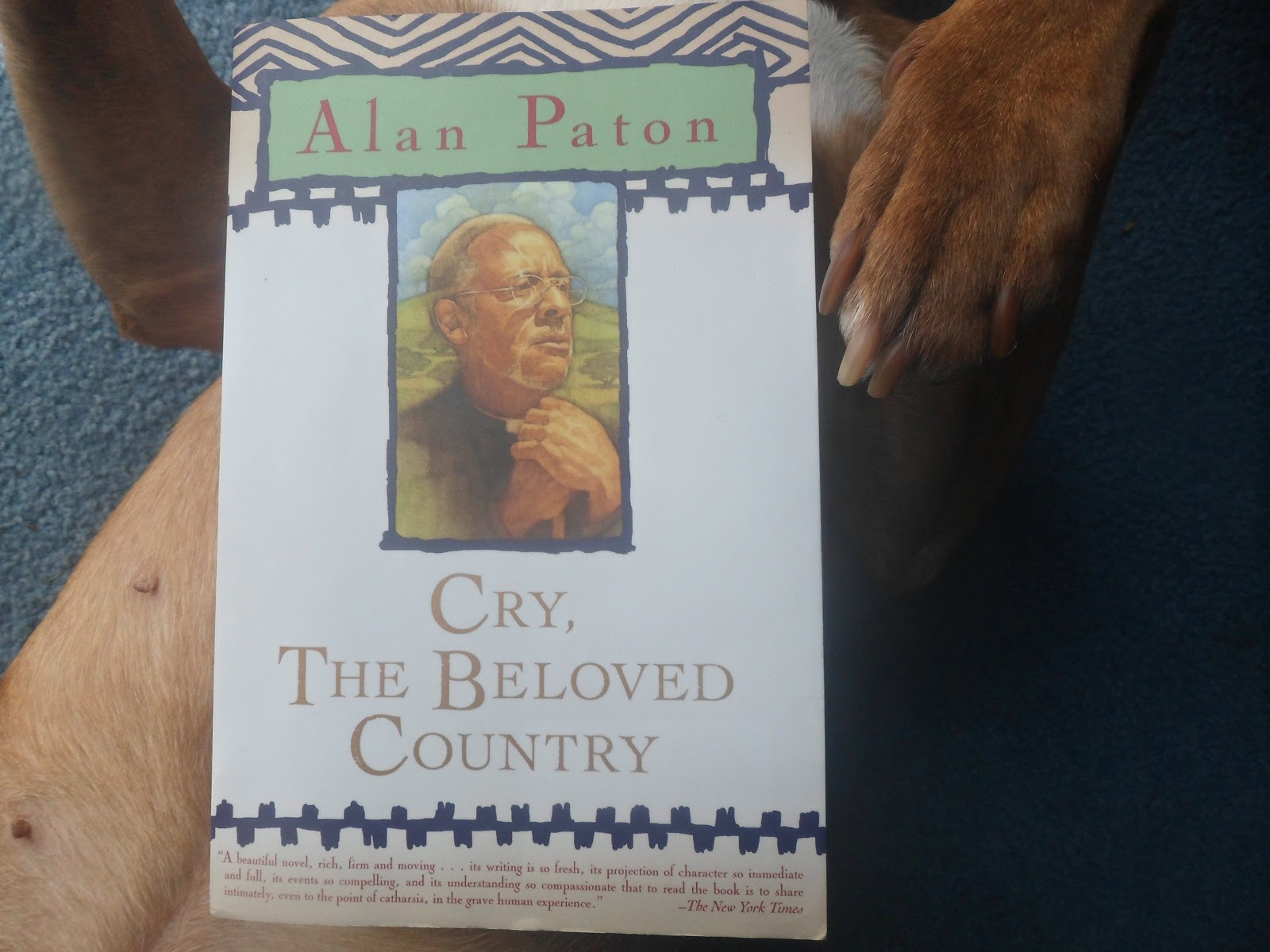 social and economic problems in cry the beloved country Cry, the beloved country was first released in 1952 it is based on the novel by alan paton, released in 1948, just four months before the racist national party, which introduced the legal system of apartheid, took power in south africa.