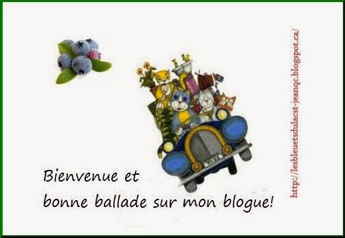 http://lesbleuetsdulacst-jeanqc.blogspot.ca/