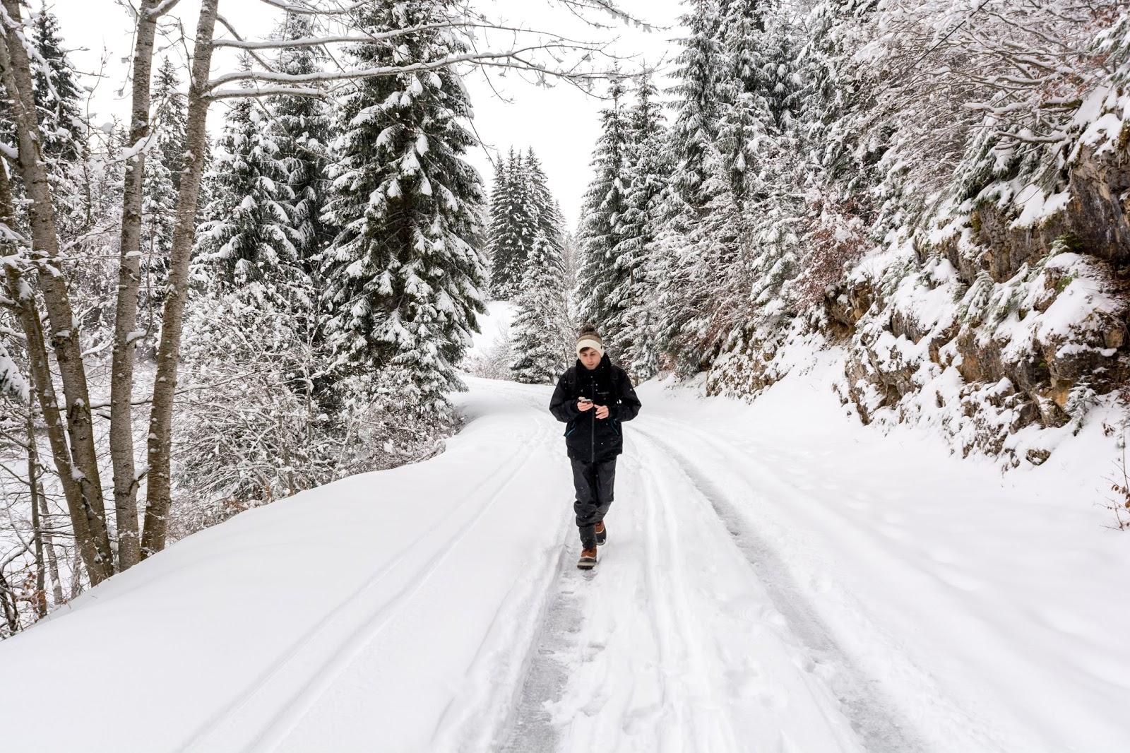paysage, parc, Jura, hiver, rando, raquettes, neige, crêt, chalam