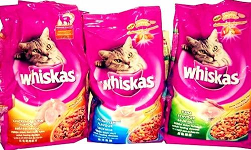 Daftar Harga Makanan Kucing Semua Merek