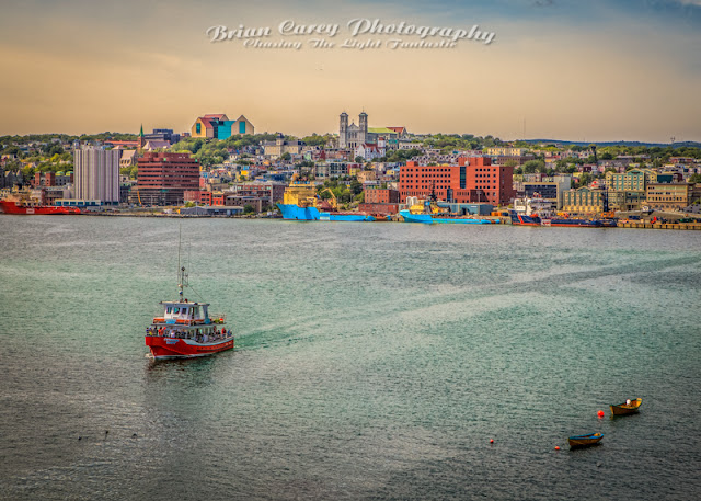 Tour Boat at St John's Harbour by Brian Carey