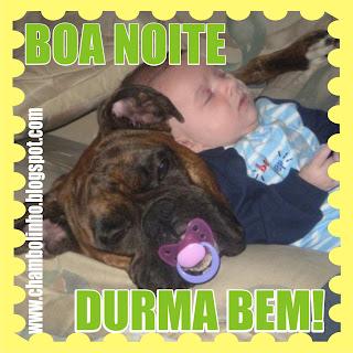 Big brother brasil 12 laisa 03 brasileirastubeorg - 3 4