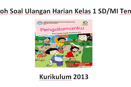 Contoh Soal Ulangan Harian Kelas 1 SD/MI Tema 5