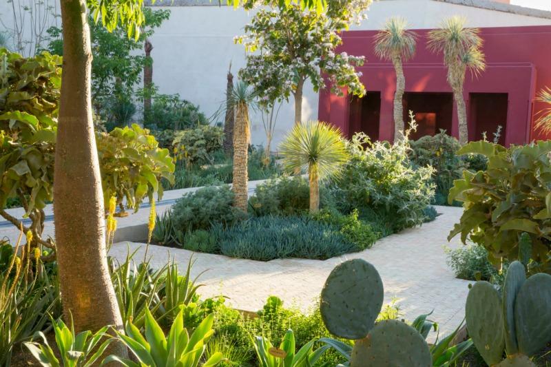 Plantas exóticas en Le Jardin Secret