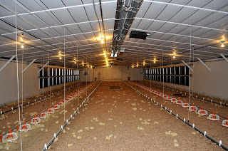 Why Use Infrared Tube Heaters to Heat Your Shop or Barn