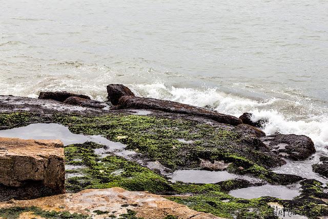 El mar rompiendo en la costa y el verde musgo entre charcos.