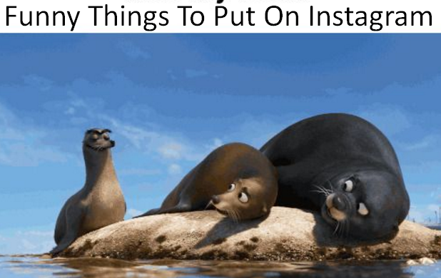 Funny Things To Put On Instagram