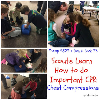 Scouts Learn CPR, CPR, Chest Compressions