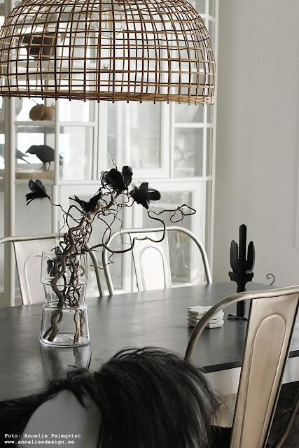 annelies design, webbutik, webshop, nätbutik, inredning, kaktus, kaktusar, kök, matgrupp, matsal, vas, vako, fjäderblomma, fjäderblommor, dekoration, fjädrar