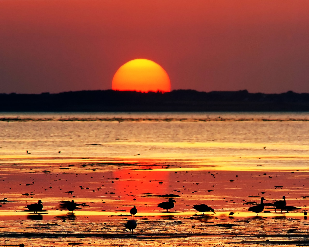 Nature's Best: Sunset Photography