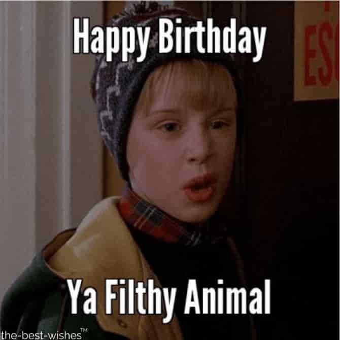 happy birthday memes for brother ya filthy animal