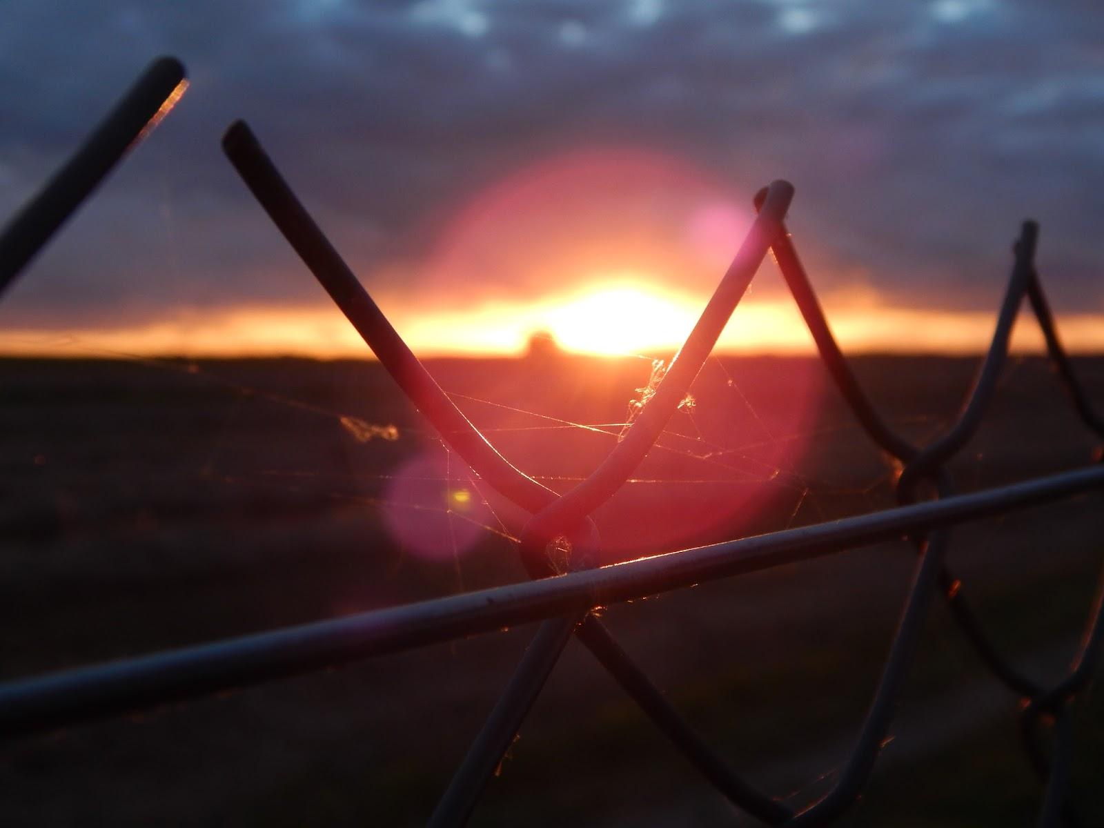Západ slunce macro