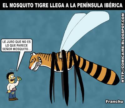 Le juro que no es lo que parece, señor mosquito, Franchu, comicaire