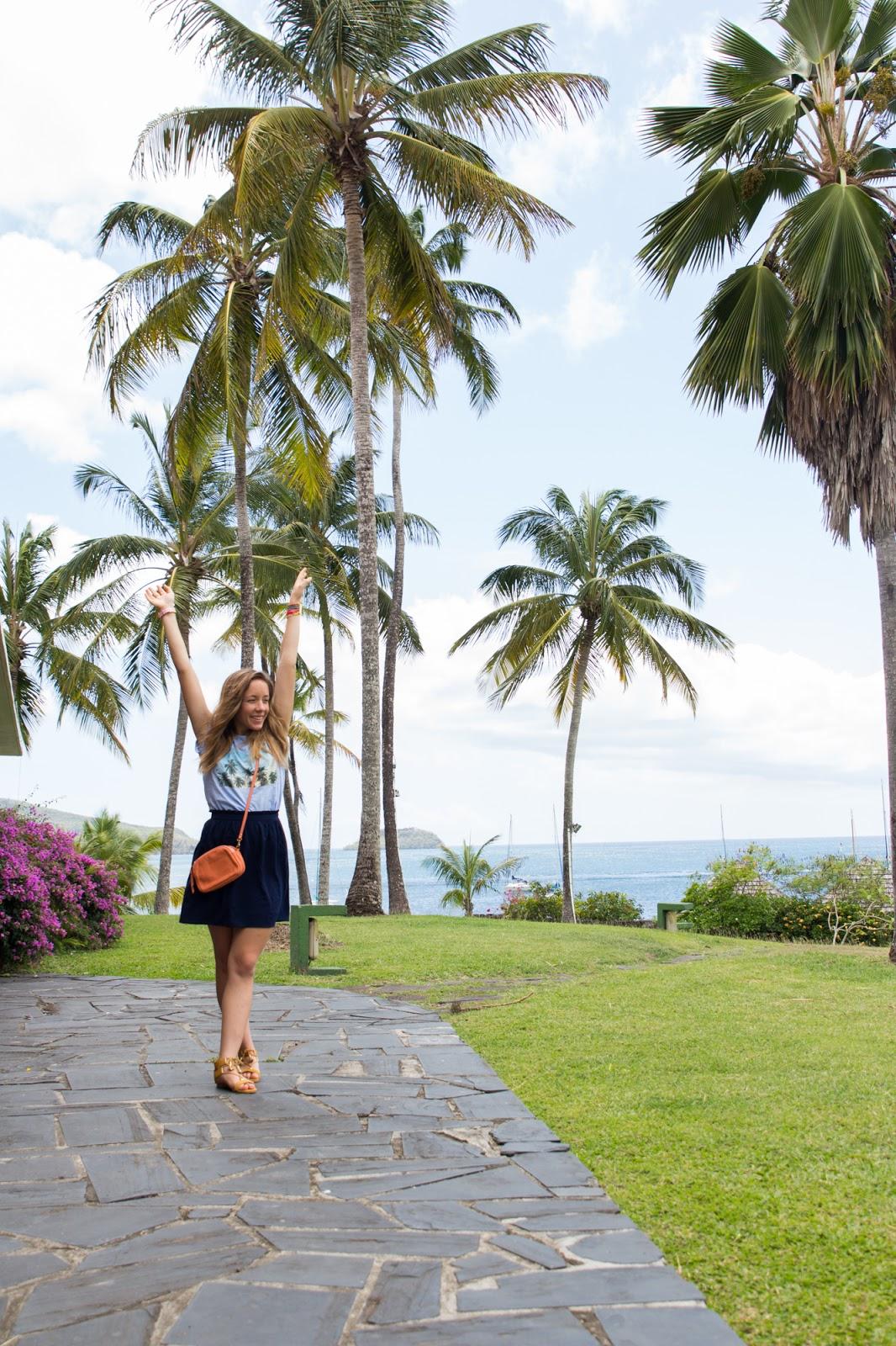 Palmiers Martinique