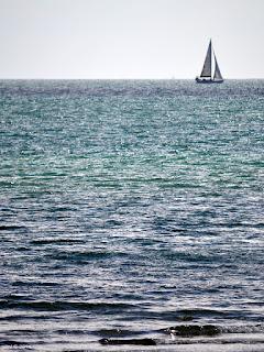 distant sail