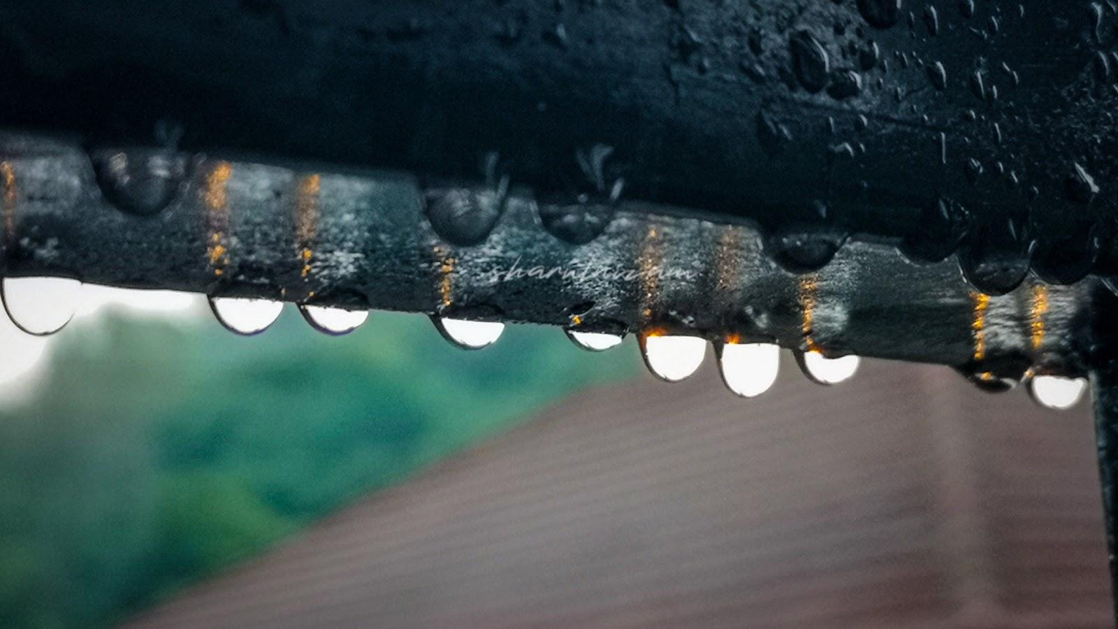 Selepas Hujan, Air Pun Menjadi Embun 4