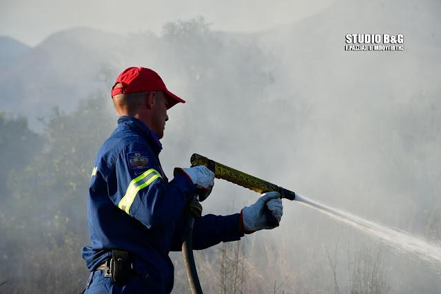 Πυρκαγιά στην Πετροθάλασσα Κρανιδίου