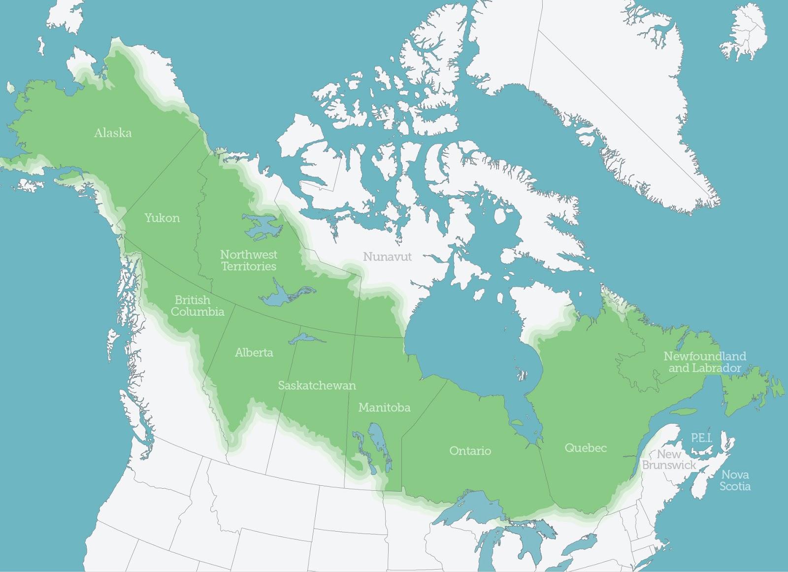 north american boreal zone