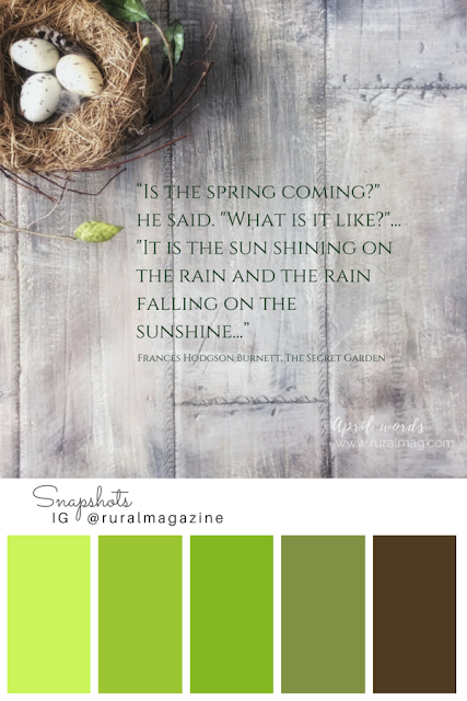 spring quote overlayed on barn board with birds nest and color palette