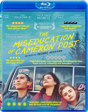 The Miseducation of Cameron Post 2018 Eng 720p BRRip 700Mb ESub x264