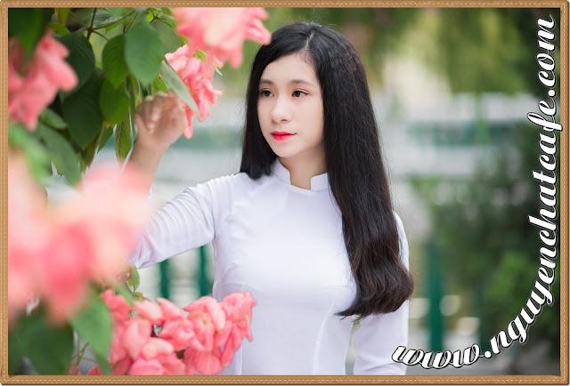 bo-suu-tap-ao-dai-truyen-thong-viet-nam-p1