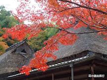吉城園 – 奈良紅葉秘景