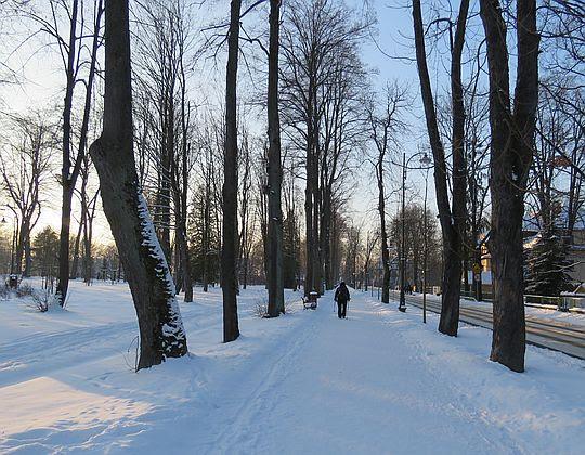 Alejka między Parkiem Zdrojowym i ulicą Orkana.