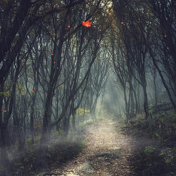 Awesome Forest Wallpaper Engine