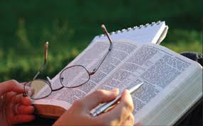 Estudando a Bíblia vercículo por vercículo